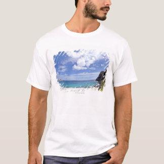 Camiseta Praia de Makapuu em Oahu, Havaí
