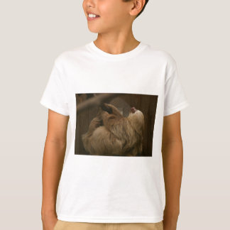 Camiseta Preguiça