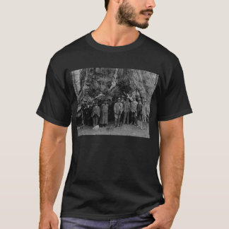 Camiseta Presidente Roosevelt e John Muir Califórnia 1903