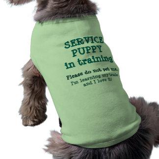 Camiseta Preste serviços de manutenção ao treinamento do fi