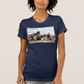 Camiseta Primavera - Fox ártico