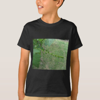 Camiseta Primeiros botões na árvore de mulberry branco