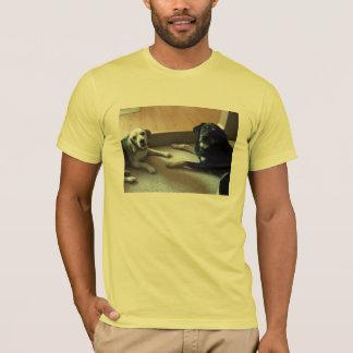 Camiseta prognosticado e chester