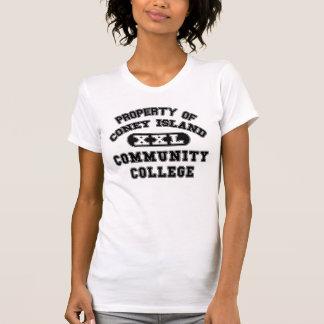 Camiseta Propriedade do Instituto de Ensino Superior de