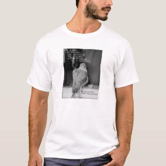 Camiseta Proteja os milagre