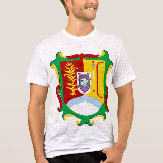 Camiseta Protetor de Nayarit, México