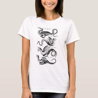 Camiseta Quatro Wyverns ou dragões