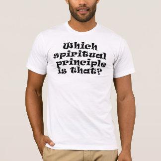 Camiseta Que princípio espiritual