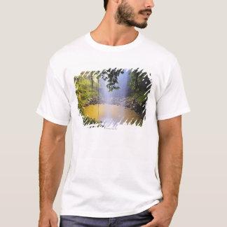 Camiseta Quedas de cristal do chá, parque nacional de
