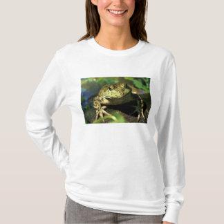 Camiseta Rã de Bull
