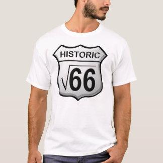 Camiseta Raiz 66