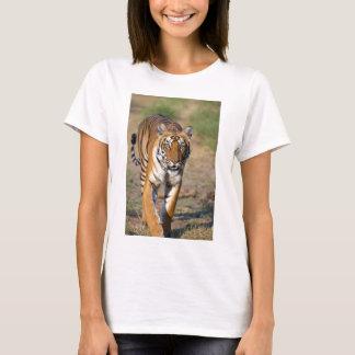 Camiseta Rapina de desengaço do Tigress fêmea
