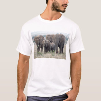 Camiseta rebanho do elefante