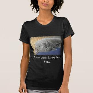 Camiseta Relaxe! Gato de ronrom cinzento - enegreça o