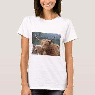 Camiseta retrato do gado das montanhas