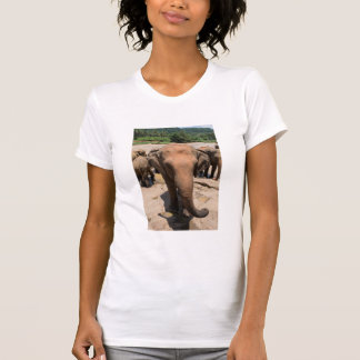 Camiseta Retrato do grupo do elefante, Sri Lanka