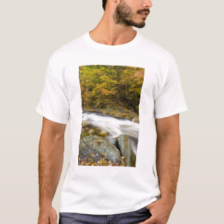 Camiseta Ribeiro rujir na queda no verde de Vermont
