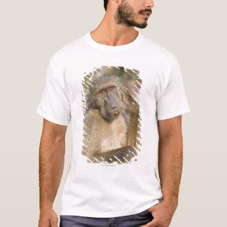 Camiseta Risco do babuíno de Chacma (ursinus do Papio) seu