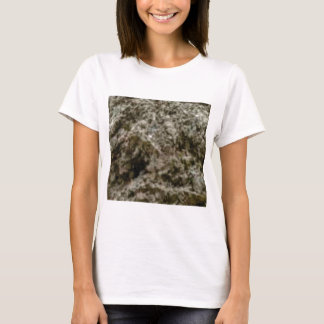 Camiseta rochas agitadas