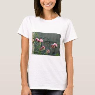 Camiseta Rosa que crescem em um jardim de Cotswold