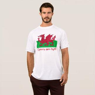 Camiseta Roupa de Galês
