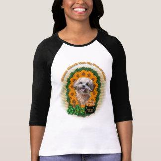 Camiseta Rua Patricks - pote de ouro - ShihPoo - Maggie