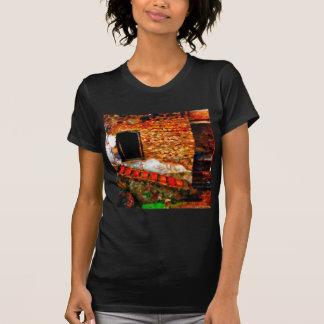 Camiseta Ruínas em Pompeii Italia