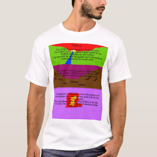 Camiseta Salmo 23