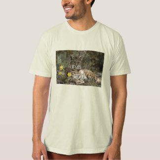 Camiseta Salvar o lince ibérico