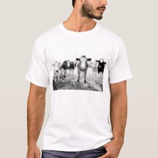 Camiseta Seis vacas irritadas