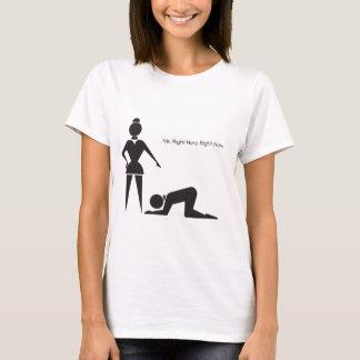 Camiseta Senhora Direito