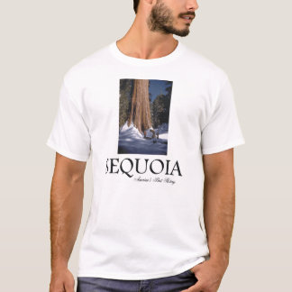 Camiseta Sequóia de ABH