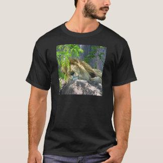 Camiseta sesta do leão