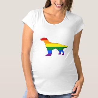 Camiseta Setter inglês do arco-íris