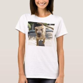 Camiseta Shar_pei_3
