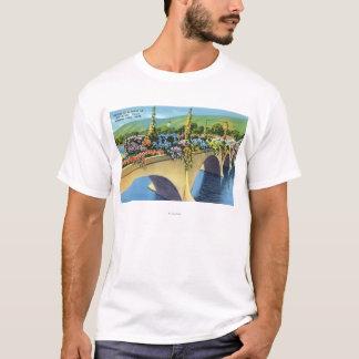 Camiseta Shelburne cai ponte das flores