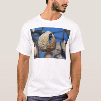 Camiseta Shell na costa