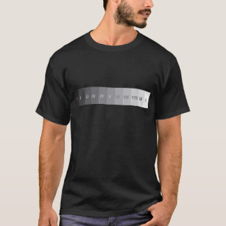 Camiseta Sistema da zona