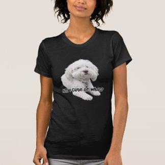 Camiseta Sou eu bonito ou que? Fotografia do cão de Bichon