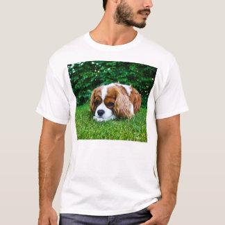 Camiseta Spaniel de rei Charles descuidado Blenheim na