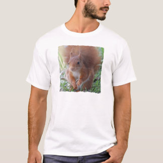 Camiseta SQUIRREL ESQUILO by Louis Glineur