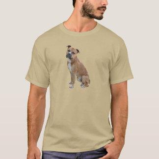 Camiseta Staffordshire Terrier americano (a) - Brown-branco