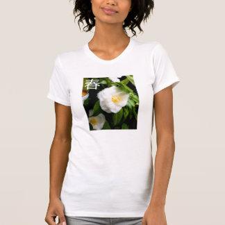 Camiseta T da caixa de primavera