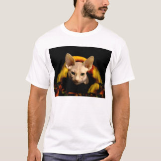 Camiseta T-shirt calvo do gato de Sphynx