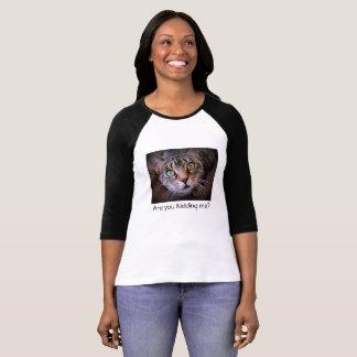 Camiseta T-shirt cinzento do gato de gato malhado do