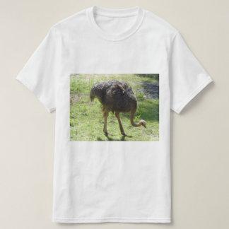 Camiseta T-shirt da avestruz