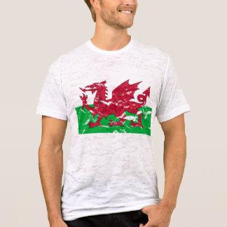 Camiseta T-shirt da bandeira de Galês