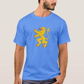 Camiseta T-shirt da bandeira do apartamento