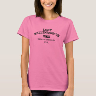Camiseta T-shirt da faculdade de Wallenpaupack do lago
