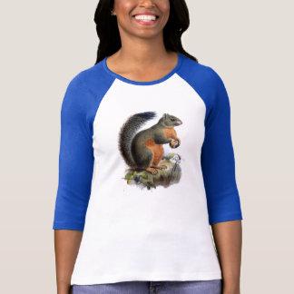 Camiseta T-shirt da ilustração do vintage do esquilo
